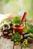 Herbs, berries and flowers with mortar, on wooden table, on bright background — Stock Photo