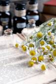 Old book with dry flowers and bottles on table close up — Stock Photo