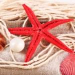 Collection of seashells with sand on sackcloth, closeup — Stock Photo #77032227
