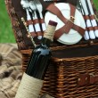 Wicker picnic basket, wine bottle and plaid on green grass, outdoors — Stock Photo #77205213