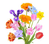 Bouquet of beautiful flowers isolated on white — Stock Photo