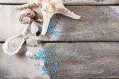 Colección de conchas con arena en el fondo de madera — Foto de Stock
