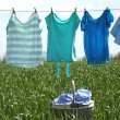 Laundry line with clothes in spring field — Stock Photo #77703516
