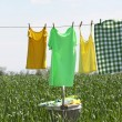 Laundry line with clothes in spring field — Stock Photo #77703536