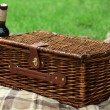 Wicker picnic basket, wine bottle and plaid on green grass, outdoors — Stock Photo #77708484