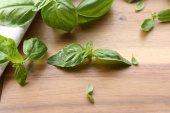 Green fresh basil — Stock Photo