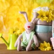 Easter bunny with painted Easter eggs with flowers on wooden table on yellow  background — Stock Photo #78083068