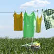 Laundry line with clothes in spring field — Stock Photo #78238592