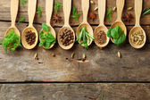 Wooden spoons with fresh herbs — Stock Photo