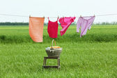 Laundry line with clothes in field — Stock Photo