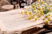 Old book with dry flowers and bottles — Stock Photo