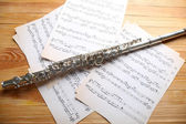 Srebrny flet z nut — Zdjęcie stockowe