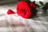 Mooie roos op muziek bladen — Stockfoto