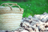 Wicker basket and Plaid for picnic — Stock Photo