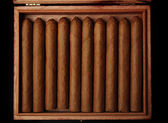 Cigars in box on table, closeup — Stock Photo