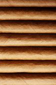 Collection of cigars, closeup — Stock Photo