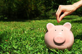 Female hand putting coin into pink piggy bank over green grass background — Stock Photo