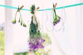 Various herbs and flowers drying on thong on light background — Stock Photo