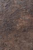 Fond de texture en bois — Photo