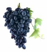 Fresh ripe grapes — Stock Photo