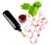 Grapes made with wine cork and goblet and bottle of wine isolated on white — Stock Photo