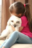 Girl with kitten on sofa at home — Stock Photo