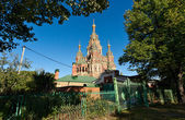 Cathedral of Peter and Pavel in Petergof — Stock Photo