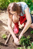 Young woman replanting flowers — Stock Photo
