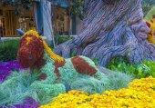 Bellagio Hotel Conservatory & Botanical Gardens — Zdjęcie stockowe