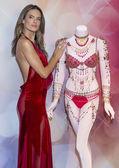 Victoria's Secret Dream Angels Fantasy Bra — Stock Photo