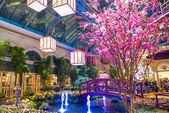 Bellagio Hotel Conservatory & Botanical Gardens — Foto Stock