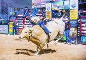 Last Cowboy Standing — Stock Photo