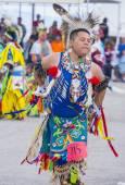 Paiute stam pow wow — Stockfoto