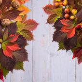 Autumn time: red vine leaves and walnuts, wild apple. — Stock Photo