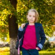 Pretty girl of school age in the autumn park. — Stock Photo #56171583