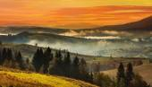 Sunset in the high  Carpathian mountains — Stock Photo