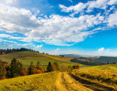 Wide road in the Carpathian Mountains. — Stock Photo