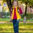 Pretty girl of school age in the autumn park. — Stock Photo #68975721