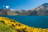Lake Wakatipu — Stock Photo