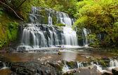 Purakaunui Falls — Stock Photo