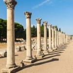 Columns in Ephesus — Stock Photo #55108429