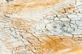 Cracked ground near mudpot — Stock Photo