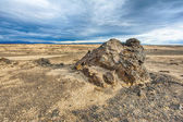 Lava landscape of Iceland — Stock Photo