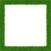 Grass border — Stock Vector