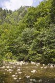 Rocky river — Stock Photo