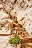Stone staircase leads  — Stock Photo