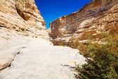 Landscape of the Negev desert mountains — Stock Photo