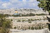 Al-Aqsa panorama of the old city — Stockfoto