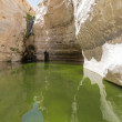 Gorges in the Negev desert — Stock Photo #55958937