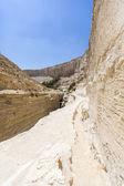 Landscape of deep gorges  — Stock Photo